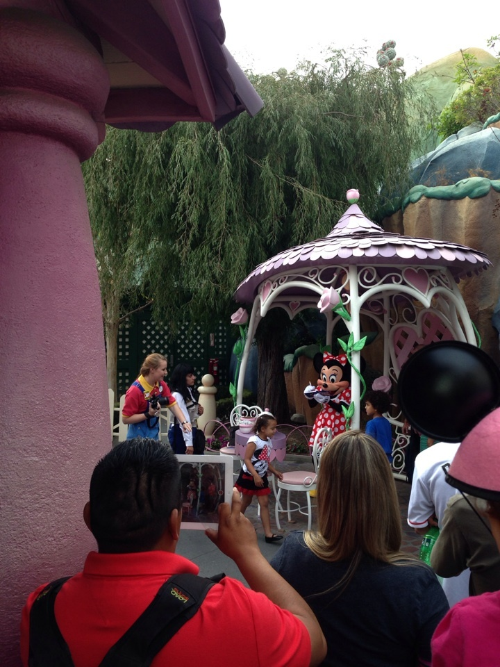 Minnie Mouse House Backyard