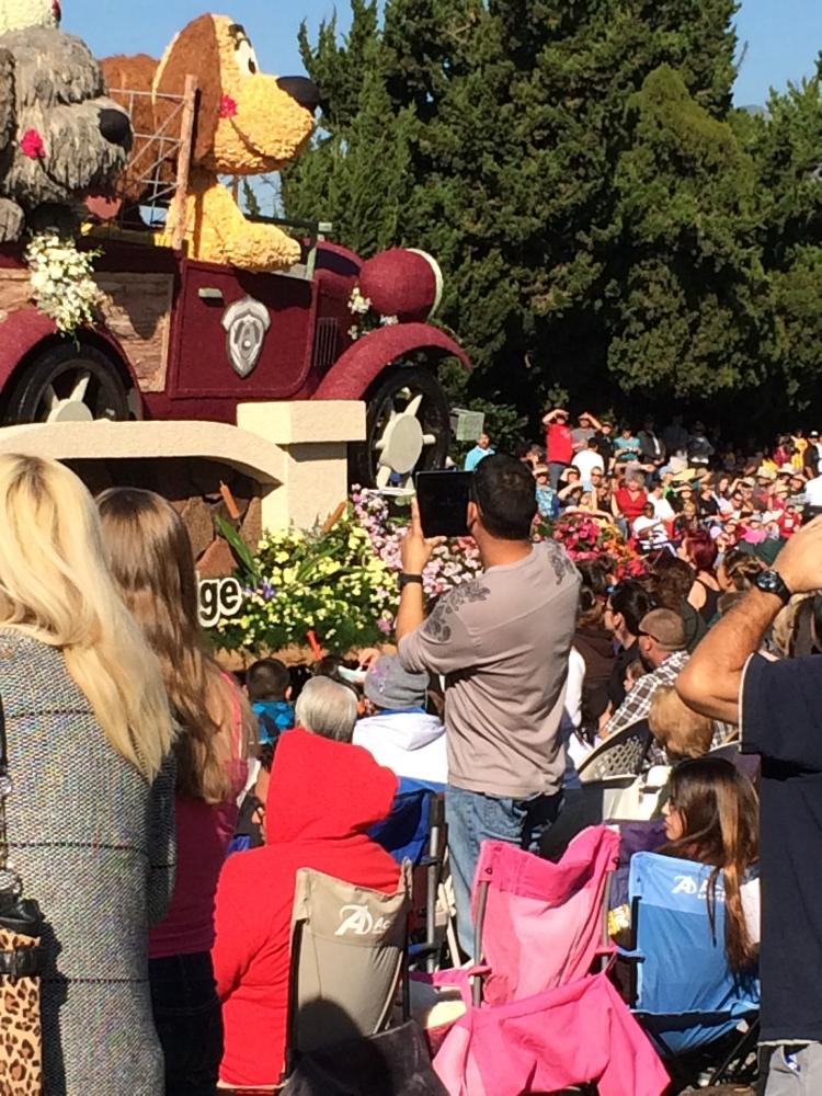 At the 2014 Rose Parade